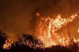 美 캘리포니아 산불 2주째 확산…샌타바버라로 번져