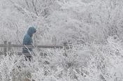 [주말N여행] 제주권: 겨울, 더 아름답다…하얗게 덮인 '눈 세상'
