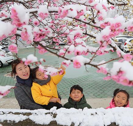 '춘분' 꽃샘추위에 눈·비…강원산간 최대20㎝ 폭설