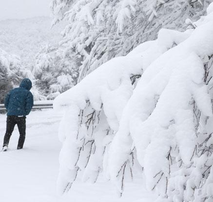 춘삼월에 불어닥친 눈폭풍…전 세계 기상 이변 속출