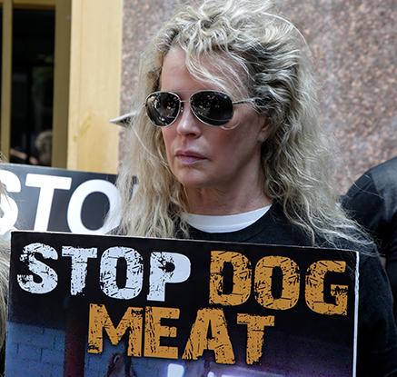 美 연예인들, LA총영사관 앞에서 '개고기 식용반대' 시위