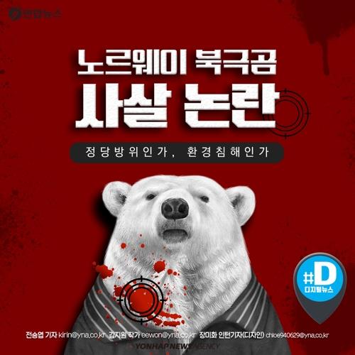 [카드뉴스] 노르웨이 북극곰 사살 논란…정당방위인가, 환경침해인가