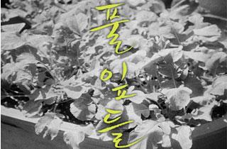 """""""사랑은 개뿔"""" 외치는 홍상수의 22번째 영화 '풀잎들'"""
