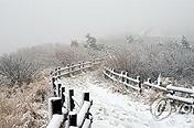 가을에 찾아온 겨울…설악산 중청 20㎝ 첫눈 '펑펑'
