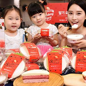 홈플러스, 여름 쿨 디저트 '딸기 요거트 케이크' 출시