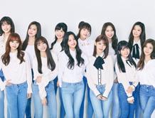 아이즈원 日 멤버들, AKB48 멈추고 새 팀 전념한다