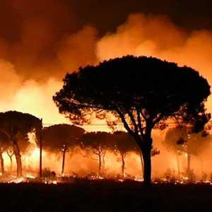 스페인에도 대형 산불…세계자연유산 위협