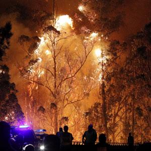 스페인 폰테베드라서 산불