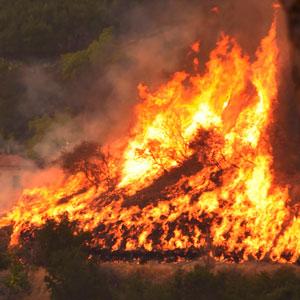 12일째 계속되는 미 캘리포니아 산불