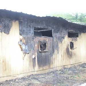 청주 돼지농장 화재, 돼지 360마리 폐사