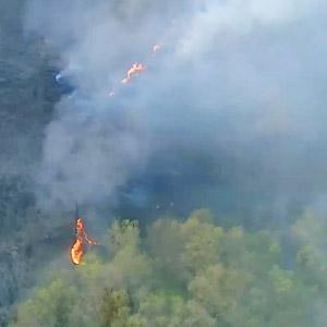경기도 연천 DMZ 산불