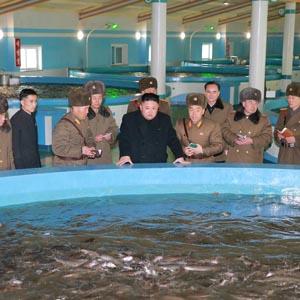 북한 김정은, 삼천메기공장 시찰
