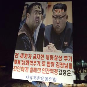 '김정남 암살 규탄' 대북전단