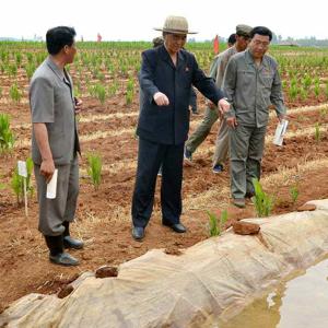 북한 박봉주, 가뭄피해 현지시찰