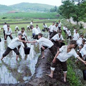 북한, 가뭄 극복에 총력