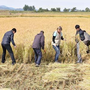 북한에서 열린 세계식량의 날 행사