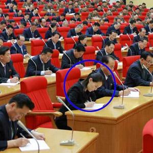 당 전원회의 참가하는 김여정