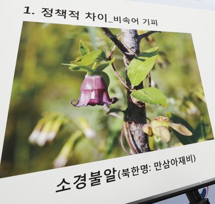 북한 사용 식물명, 절반이 남한과 다르다