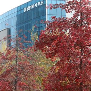 남북 사이에 다가온 가을, 단풍 물든 남북공동연락사무소