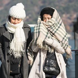 '서울 추워요'