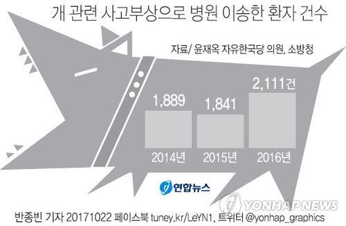 [그래픽] 개 관련 사고부상으로 병원 이송한 환자 건수