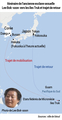 Itinéraire de l'ancienne esclave sexuelle Lee Bok-soon vers les îles Truk et trajet de retour