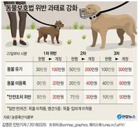 [그래픽] 반려동물 소유자 준수사항 위반 과태료 강화
