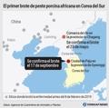 El primer brote de peste porcina africana en Corea del Sur