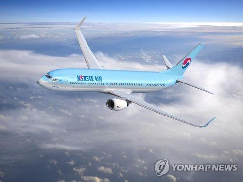 资料图片:大韩航空B737客机(韩联社/大韩航空提供)