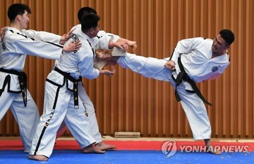2月12日下午2点,在首尔市政府多功能厅,韩朝跆拳道示范团在联演中表演击破8厘米厚的木板。(韩联社/联合采访团提供)