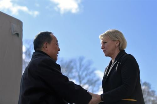 资料图片:朝鲜外相李勇浩(左)与瑞典外长瓦尔斯特伦会面。(韩联社/瑞典外交部提供)