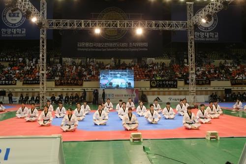 资料图片:2017年金云龙杯国际跆拳道公开赛开幕式(韩联社/组委会提供)
