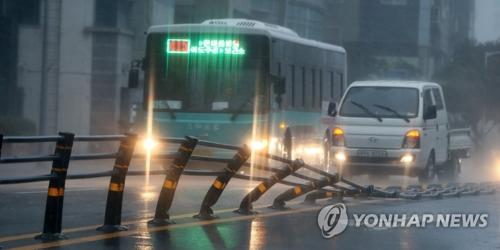 资料图片:8月23日,济州市区一处道路中央分隔带被风吹倒在地。(韩联社)