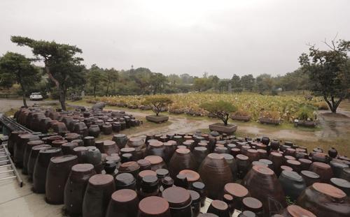 扎堆的酱缸(韩联社记者成演在摄)