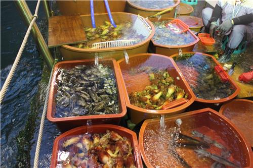 Fresh seafood is displayed on a street in Ulleung Island, South Korea, on June 27, 2016. (Yonhap)