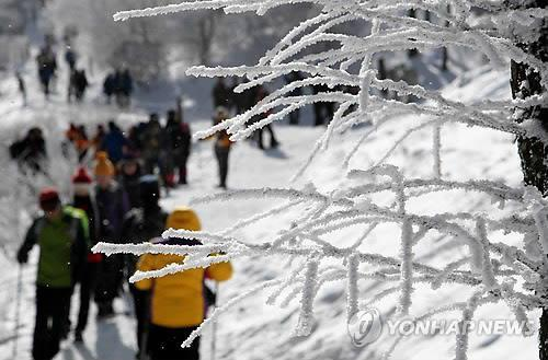 In this file photo, people climb up Mount Taebaek to enjoy the snow-covered landscape. (Yonhap)