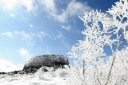 In this file photo, trees in Mount Taebaek are covered in snow. (Yonhap)