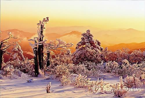 This file photo shows Mount Taebaek at dawn. (Yonhap)