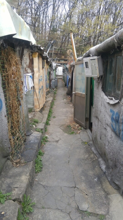 An alley in Guryong Village, shown in this photo taken on April 13, 2017, feels deserted. (Yonhap)
