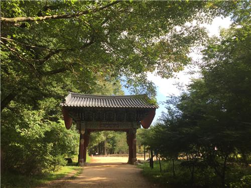 This photo taken Sept. 14, 2017, shows a trail through a forest at Woljeong Temple in PyeongChang, the host city of the 2018 Winter Olympics located 180 kilometers east of Seoul. (Yonhap)