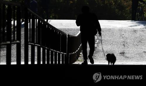 A visitor walks a dog at a park in Seoul in this file photo taken Oct. 23, 2017. (Yonhap)