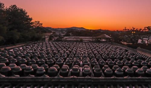 "This photo shows more than 2,000 large clay jars, or ""jangdok,"" containing traditional sauces and condiments at a traditional sauce maker in Anseong, Gyeonggi Province. (Yonhap)"