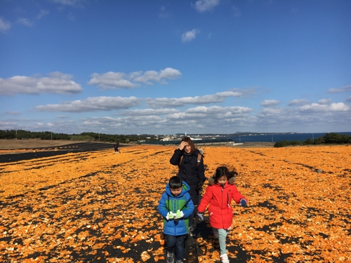 The photo, provided by Lee Na-hyeon, shows Lee and her two children walking in a field of tangerine peels laid out to dry at the Sincheon Ranch, Seogwipo, on Jeju Island during their monthlong stay in January 2017. (Yonhap)