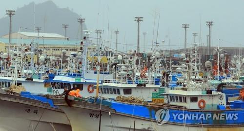 Hundreds of fishing vessels are docked at the port of Seogwipo on Jeju Island on Oct. 5, 2018, as Typhoon Kong-rey approaches the South Korean resort island. (Yonhap)
