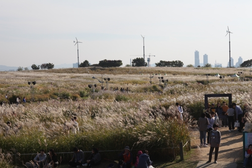 Seoul Silver Grass fest to open this week
