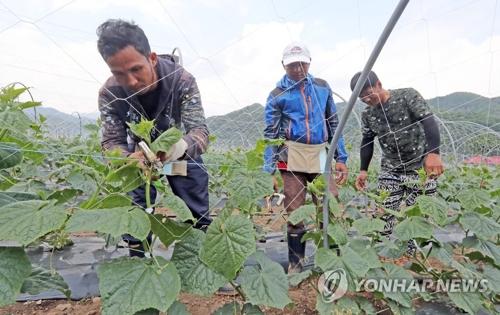 Travailleurs étrangers en Corée du Sud (Photo d'archives Yonhap)