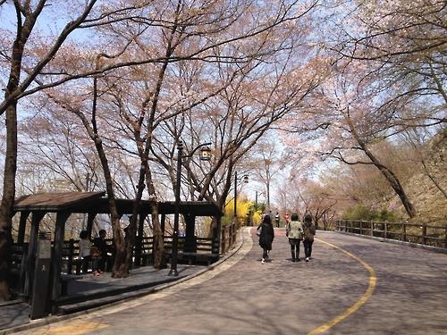 南山公園の北側循環路(ソウル市提供)=(聯合ニュース)