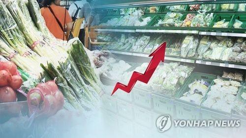 野菜価格の上昇で8月の消費者物価指数は5年4カ月ぶりの高水準となった(イメージ)=(聯合ニュースTV)