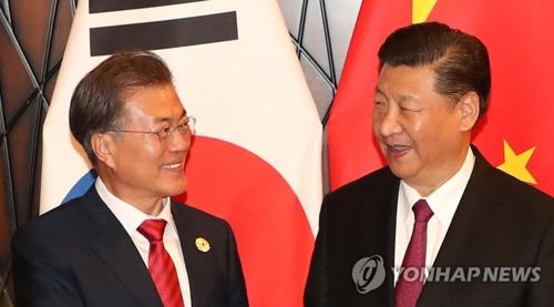 11月11日、ベトナムで首脳会談を行う文大統領(左)と習主席=(聯合ニュース)