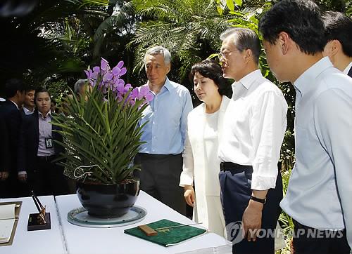 リー・シェンロン首相(手前左端)と共に自らの名を冠したランを鑑賞する文在寅大統=12日、シンガポール(聯合ニュース)